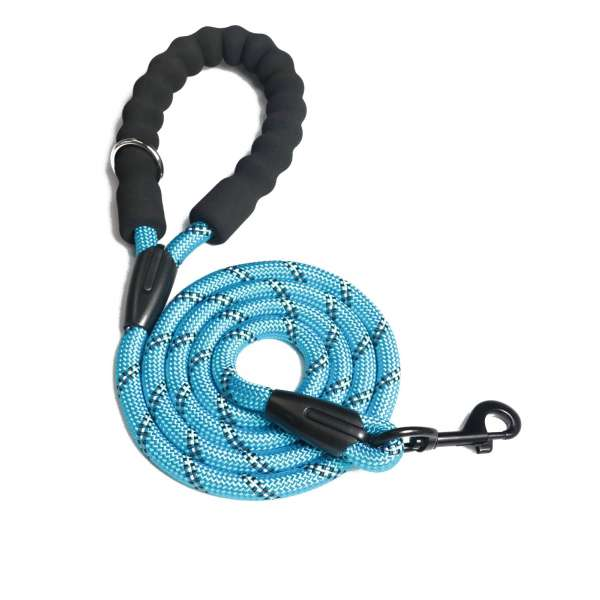 Blue reflective dog lead
