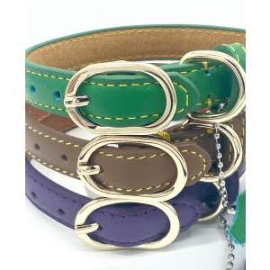 Three leather dog collars